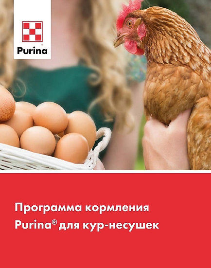 Комбикорм для кур-несушек фазовый PURINA (40 кг)