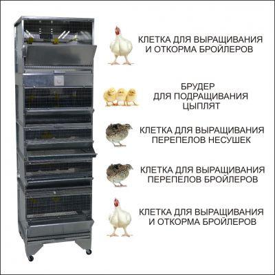 """""""Домашняя Ферма №6"""" премиум"""