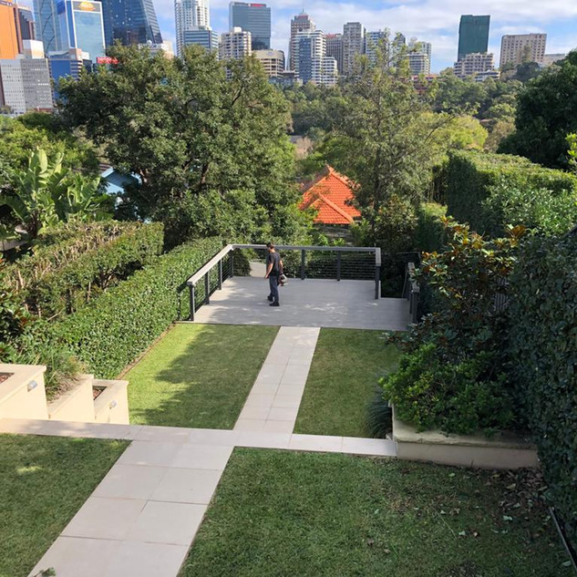 Neutral Bay hedging & Pest Control