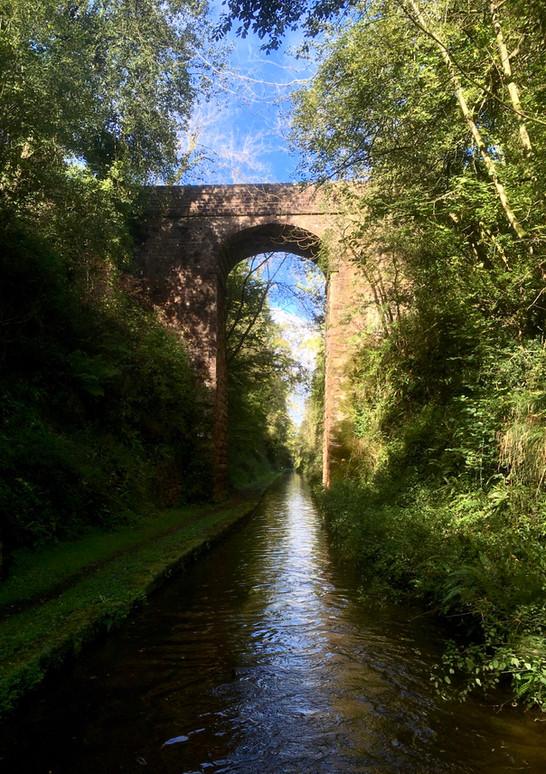 Bridge of the day