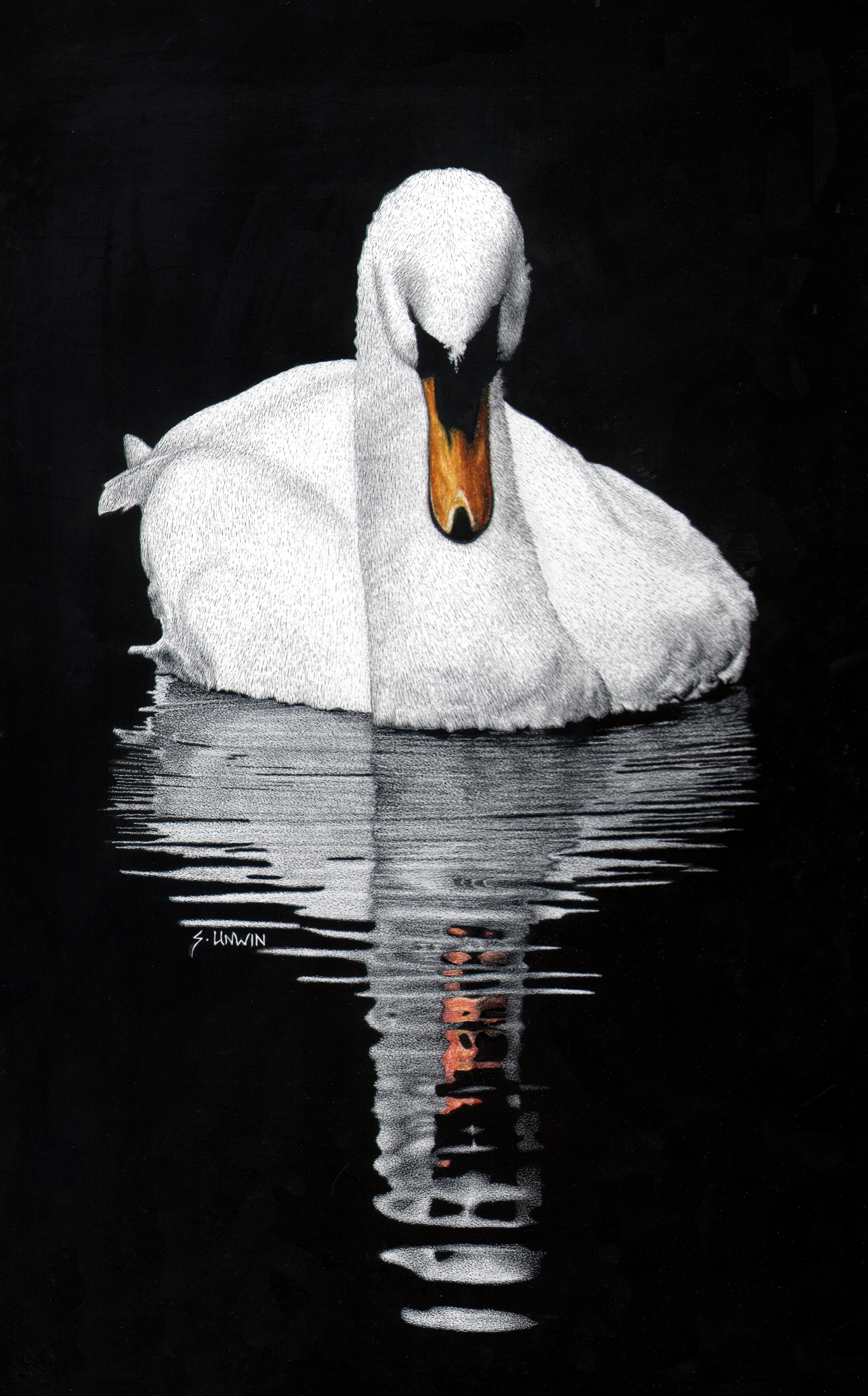 Tranquil_Reflection