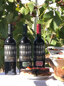 alpasion_wines_food.JPG