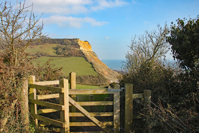 View of the cliffs at Salcombe Regis