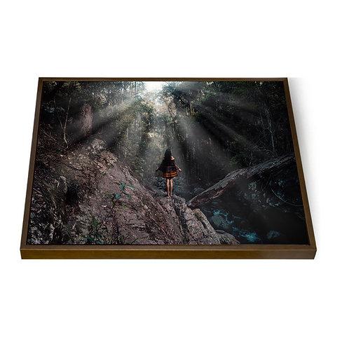 """Framed Canvas 16x24"""""""