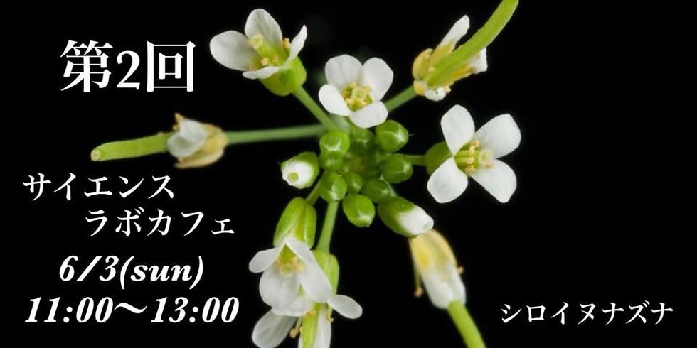 サイエンスラボカフェvol.2「モノ言わぬ植物の驚きの力」