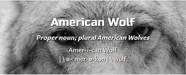American Wolf.JPG