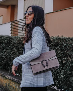 Andreia dinoysus inspired taupe leather bag