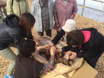 若潮会交流会〜きのこ狩りツアーin薮川を開催しました