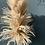 Thumbnail: White Fluffy Pampas - per stem