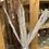 Thumbnail: White Date Leaf - per stem