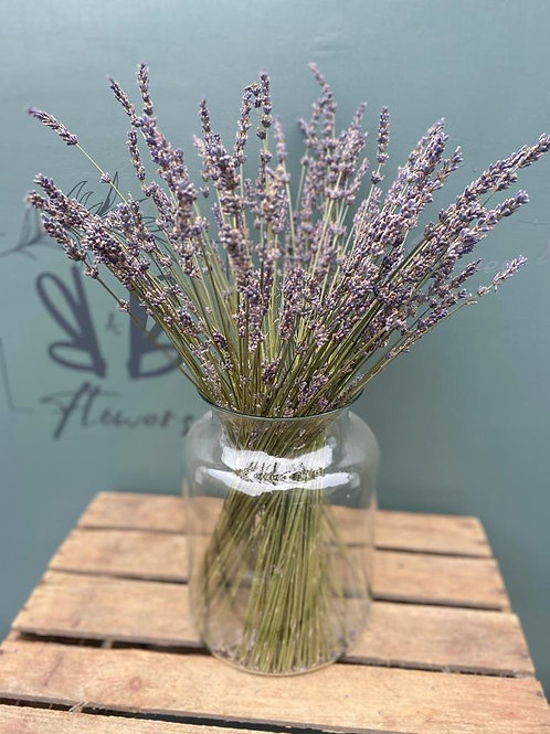 Dried Lavender in Glass Vase