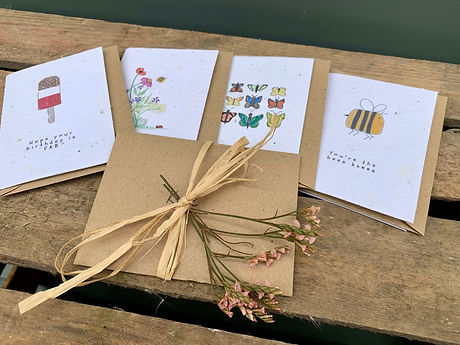 Wildflower Seed Message Cards