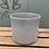 Thumbnail: Grey Stein Pot