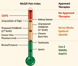 The McGill Index