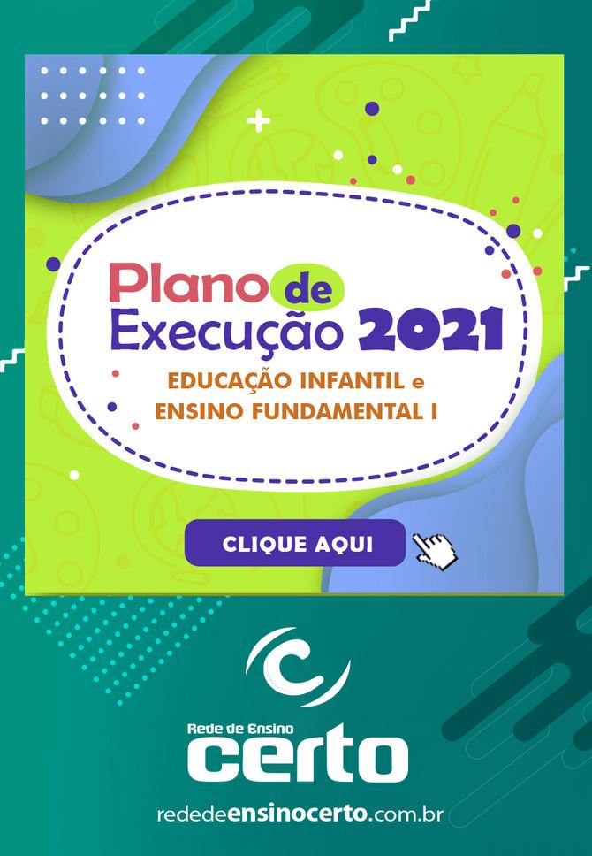 PLANO DE EXECUÇÃO 2021