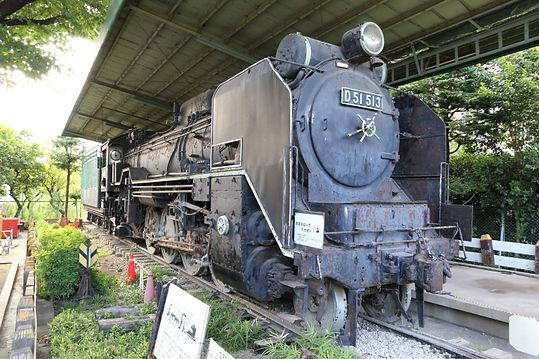 D51 513