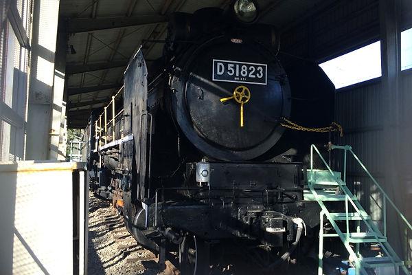 D51 823
