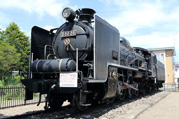 D50 25