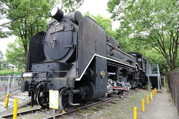D51 254