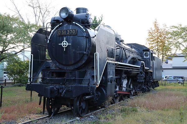 D51 370