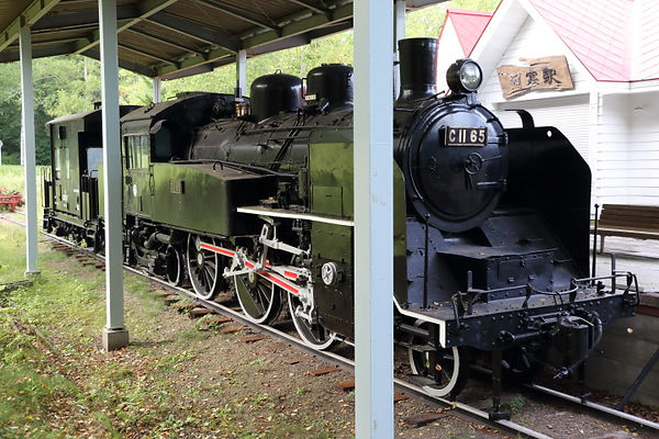 雄別炭礦鉄道 C11 65