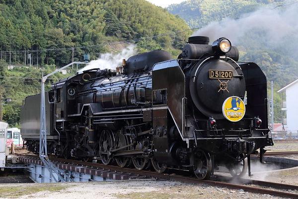 D510200f.JPG