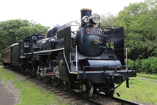 C57 186