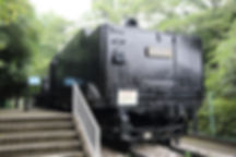 D51 118