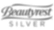 beautyrest-silver-logo-vector.png