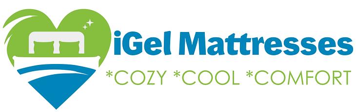 iGel Logo.png