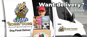 soggy-doggy-delivery-banner.jpg