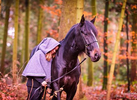 Magische Momente im Herbstwald...