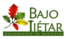 logotipo-Bajo-Tiytar-hoja-color.jpg