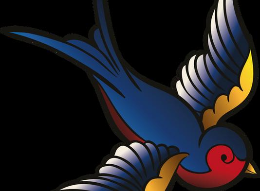 Birds Picture Quiz