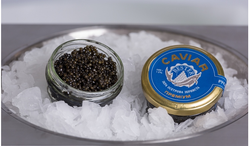 Bester Caviar.png
