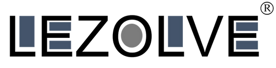 Lezolve Logo PNG.png