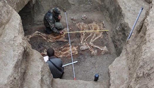 esqueleto-gigantes-rusia.jpg
