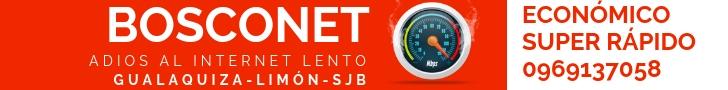 BOSCO NET (1)