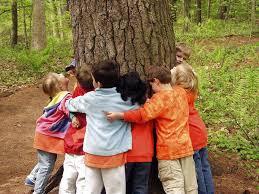 kids and tree.jpg