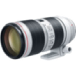 canon rf 70-200.jpg