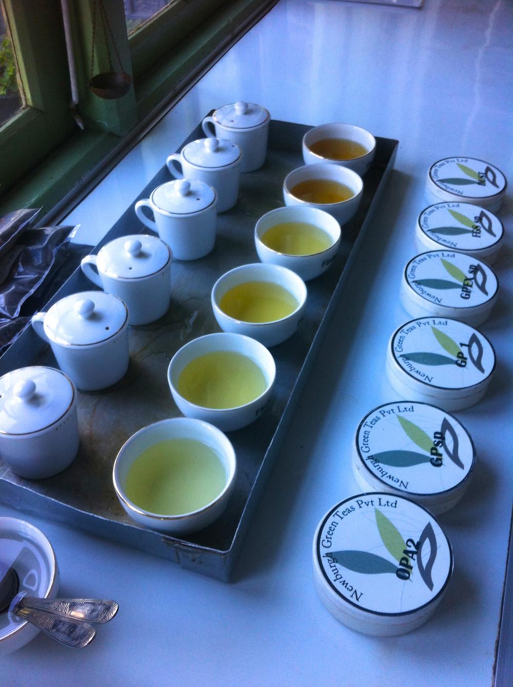 Tea Tasting Newburgh Green Teas