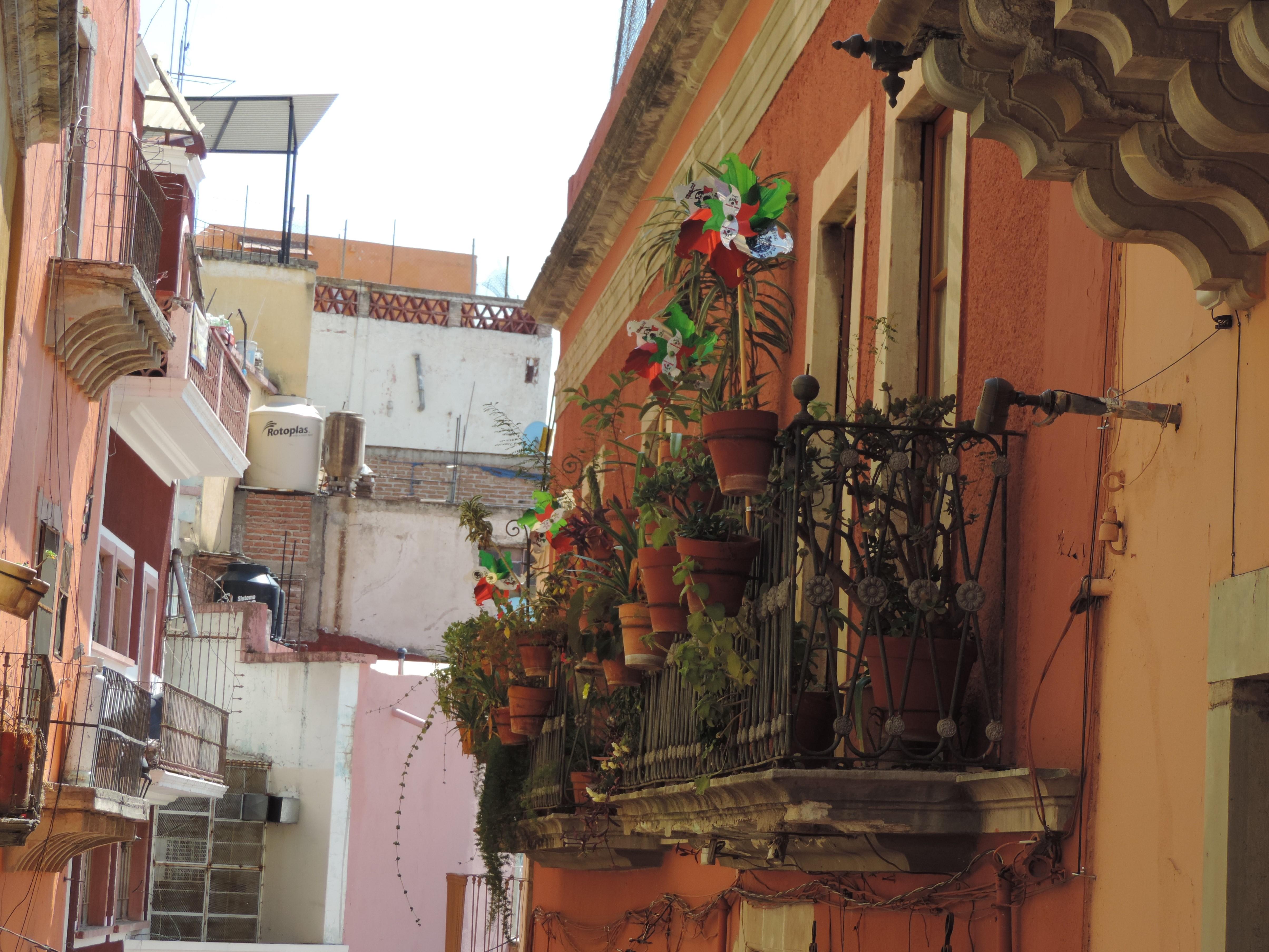 Guanajuato (17)