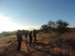Morning walk/bird watching