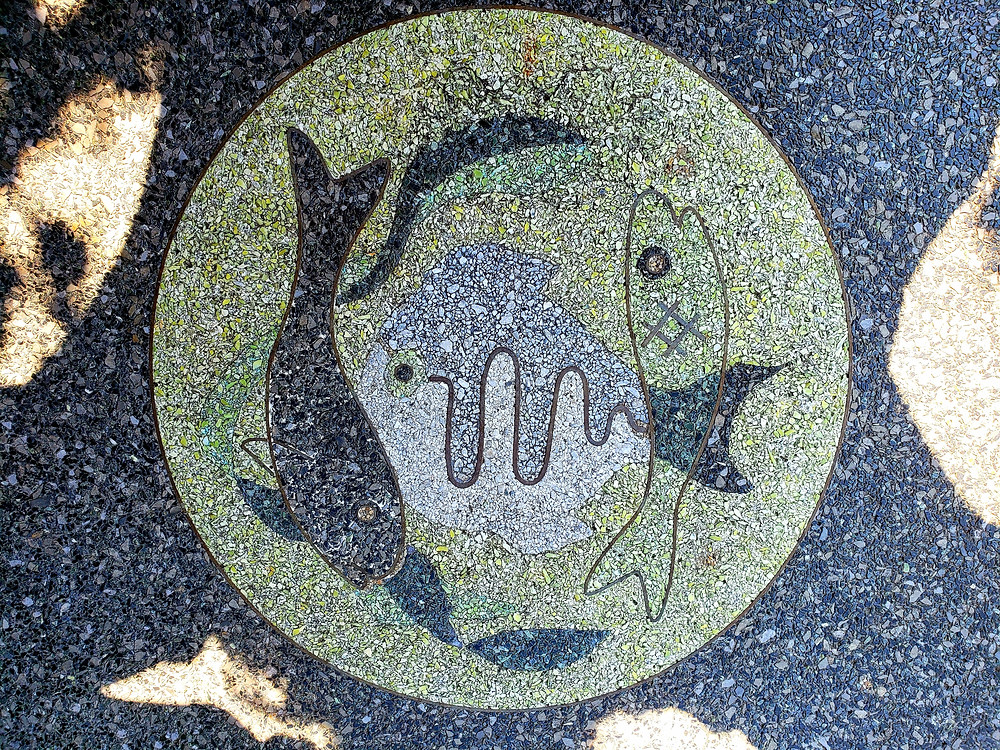 fish & moon
