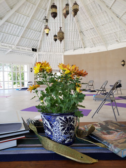 Mexico Viniyoga Retreat Feb 2019