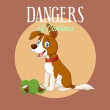 Mark's Guide to The Danger of Conkers