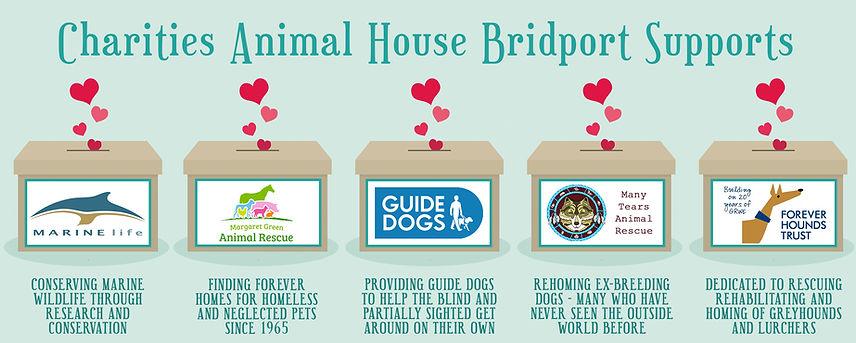 Animal House Bridport Charity Banner.jpg