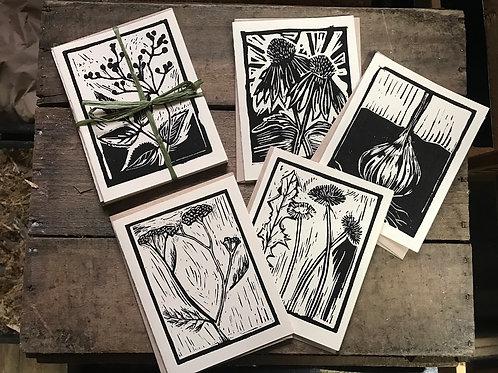 Medicinal Herb Card Set