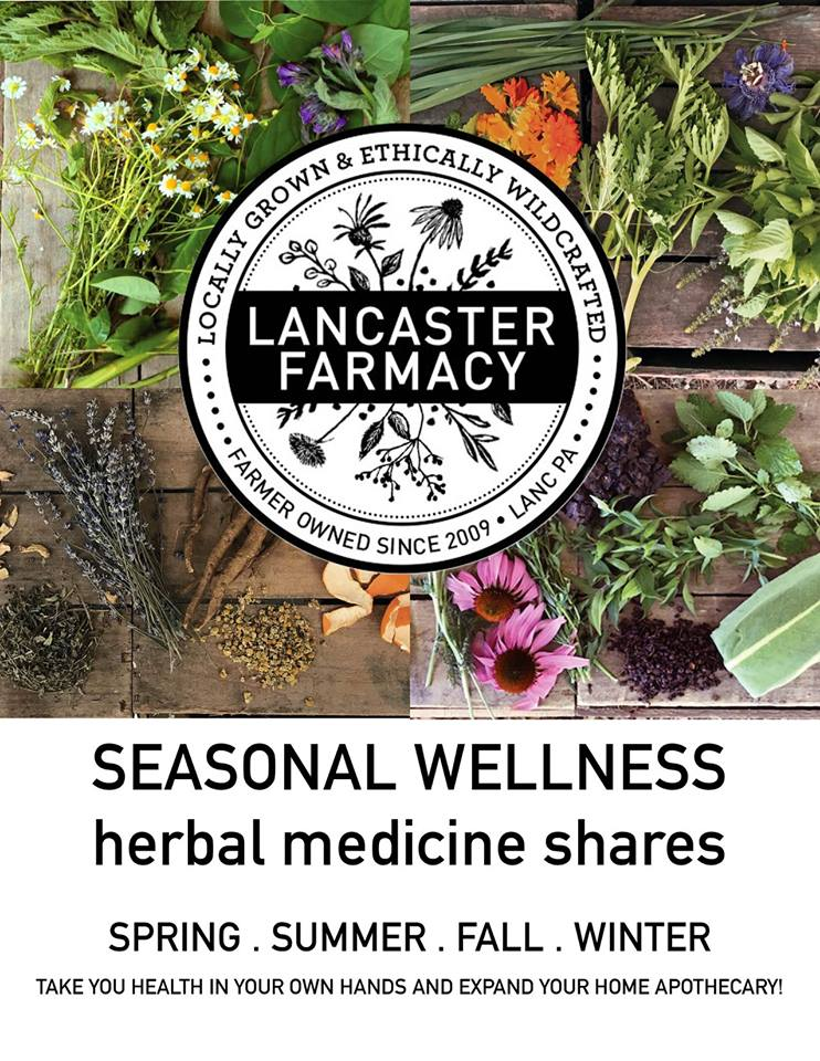 Seasonal Wellness Share