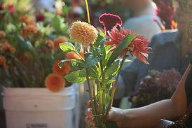 LancasterFarmacyflowers.jpg